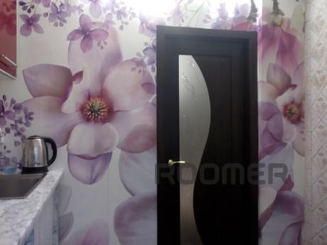 Cozy apartment near metro Botanichesky, Kharkiv - apartment by the day
